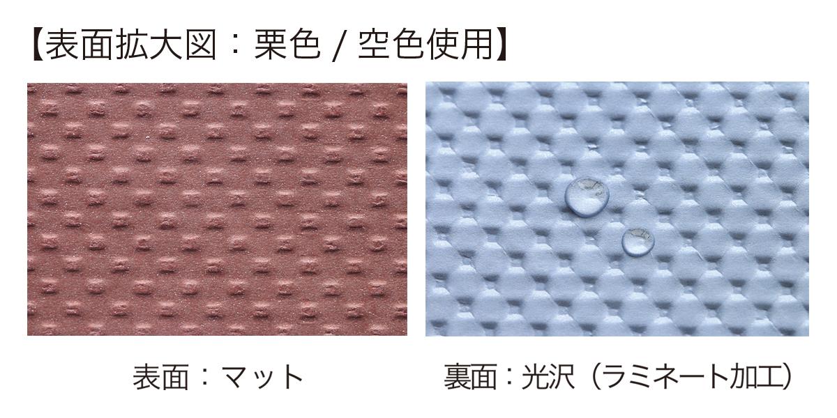 シボリ クリソラ 表面拡大図